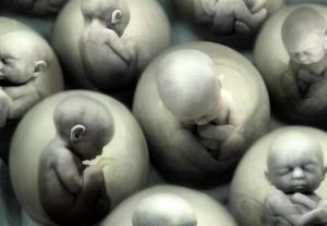 гены в эмбрионах