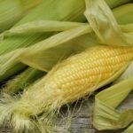 Лечебная кукуруза