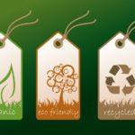 Научная и модная тенденция – изготовления экологической одежды без ущерба природе